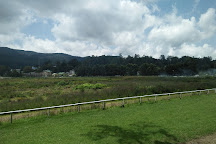 Royal Turf Club, Nuwara Eliya, Sri Lanka