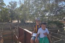 Oz Maze and Mini Golf, Echuca, Australia