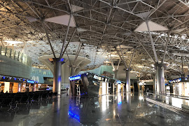 Аэропорт  Moscow Vnukovo VKO