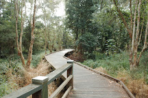Les Atkinson Park, Brisbane, Australia