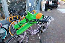 Pedego Electric Bikes Tiburon, Tiburon, United States