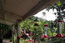 Adventure Farm and Nature Reserve, Tobago, Trinidad and Tobago