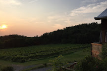Falconer Vineyards, Red Wing, United States