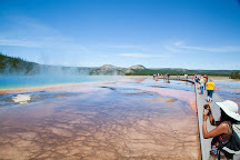 Yellowstone Safari Co., Bozeman, United States