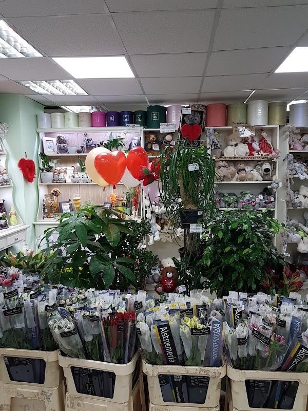 Цветы мира адреса магазинов