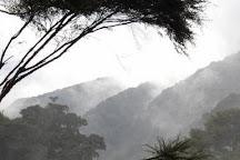 Te Urewera Treks, Rotorua, New Zealand