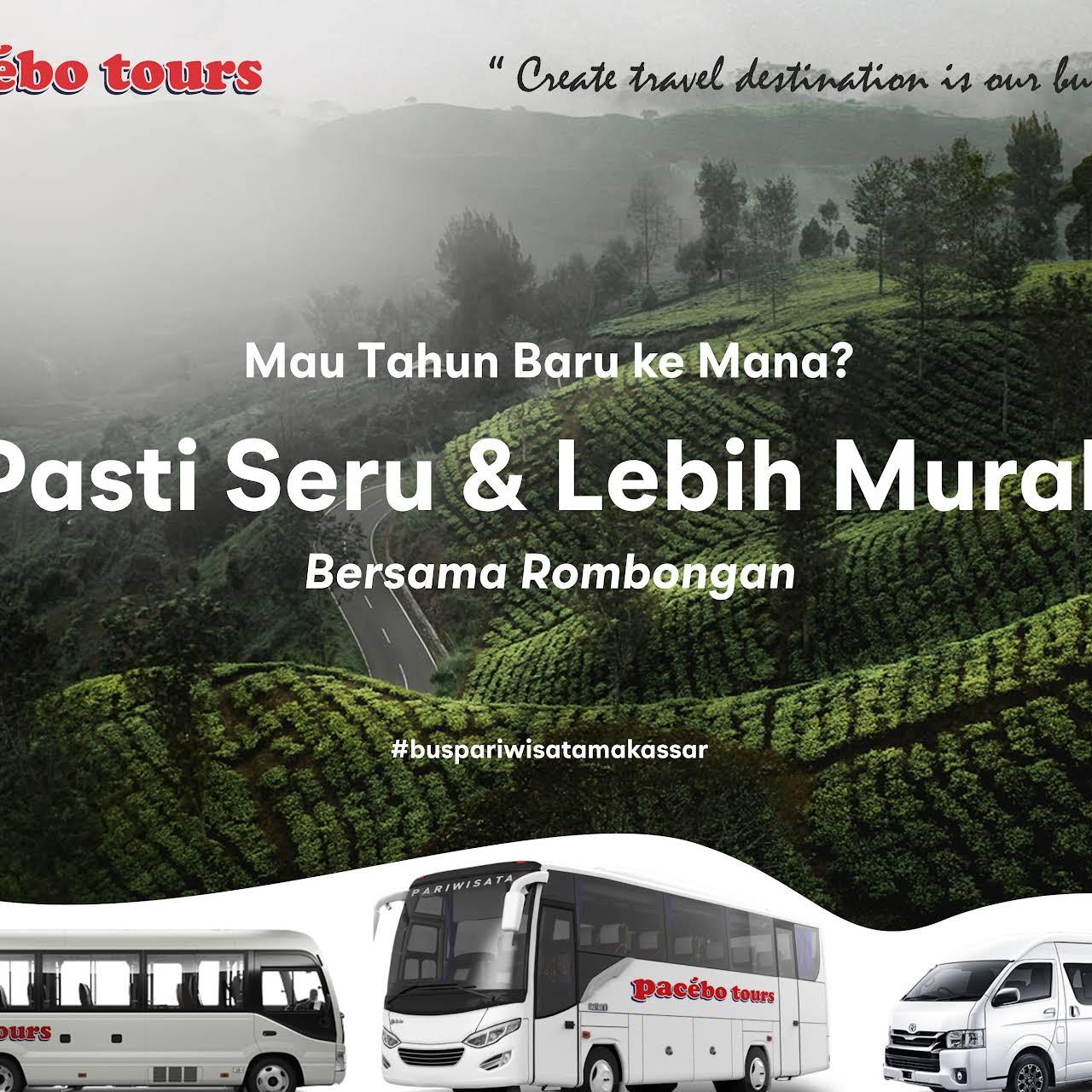 Pacebo Tours Ltd Bus Pariwisata Agen Tur Bus