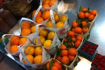 Lancaster County Farmers Market, Wayne, United States