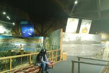 Yakama Nation Cultural Center, Toppenish, United States