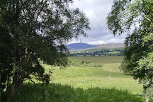RSPB - Insh Marshes, Kingussie, United Kingdom