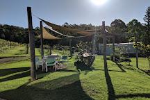 Villa d'Esta Vineyard, Dyers Crossing, Australia