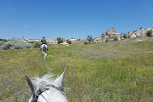 Cemal Ranch Horse Riding Center, Ortahisar, Turkey
