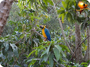 Agencia de viajes Sudamerica Tour 4