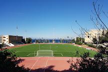 American University of Beirut, Beirut, Lebanon