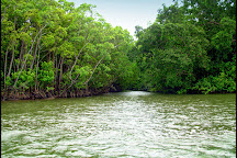 Daintree River Fishing & Photography Tours, Daintree, Australia