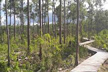 Blue Holes National Park, Andros, Bahamas