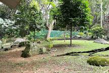 Jardin Botanico Eloy Valenzuela, Floridablanca, Colombia