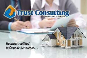 Trust Cargo Consulting 8