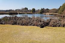Johannesburg Botanical Gardens and Emmarentia Dam, Johannesburg, South Africa