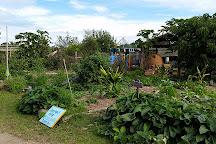 Mullumbimby Community Gardens, Mullumbimby, Australia