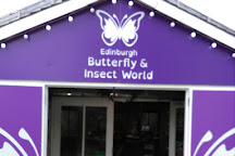 Edinburgh Butterfly & Insect World, Lasswade, United Kingdom