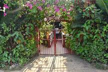 Jardin Botanico de Vinales, Vinales, Cuba