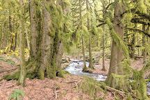 Bridal Veil Falls Provincial Park, Chilliwack, Canada