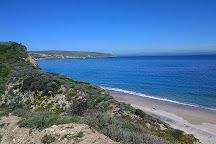 Santa Rosa Island, Channel Islands National Park, United States