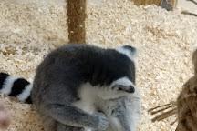 Touching Zoo Makki-Pakki, Odessa, Ukraine
