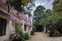 Abraham's Spice Garden, Kumily, India