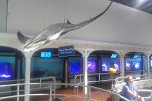 Key West Aquarium, Key West, United States