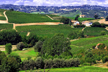 Az. Agricola Ivaldi Dario di Ivaldi Andrea, Nizza Monferrato, Italy