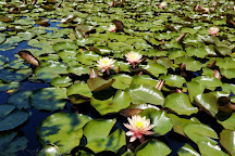 Schnormeier Gardens, Gambier, United States
