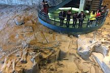 Zigong Dinosaur Museum, Zigong, China