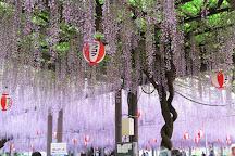 Nakayama Kumano Shrine, Yanagawa, Japan