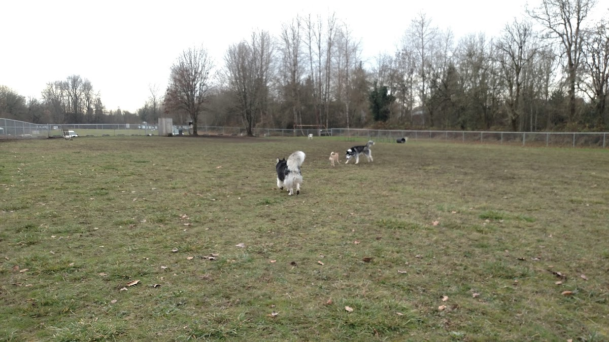 Independence Dog Park 54 Grand St Image