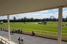 Gowran Park Racecourse, Gowran, Ireland