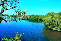 Dr. Von D. Mizell-Eula Johnson State Park, Dania Beach, United States