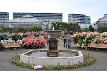 Keisei Rose Garden, Yachiyo, Japan