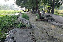 Kanjli Wetlands, Kapurthala, India
