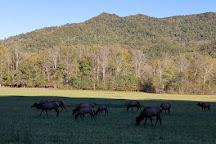 Oconaluftee Indian Village, Cherokee, United States
