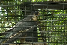 Santa Fe College Teaching Zoo, Gainesville, United States