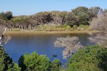 Swan Lake Trail, Summerlands, Australia