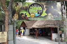 Cenote Chaak Tun, Playa del Carmen, Mexico