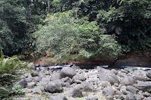 Guadeloupe National Park, Basse-Terre, Guadeloupe