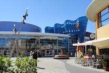 Aquarium Mare Nostrum, Montpellier, France