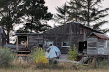 Blue Ox Millworks, Eureka, United States