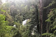 Triplet Falls, Beech Forest, Australia