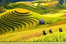 Vietnam trip 24h, Hanoi, Vietnam