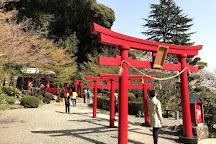 Oniishibozu Jigoku, Beppu, Japan